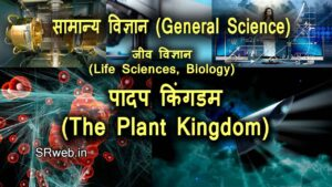 पादप किंगडम The Plant Kingdom